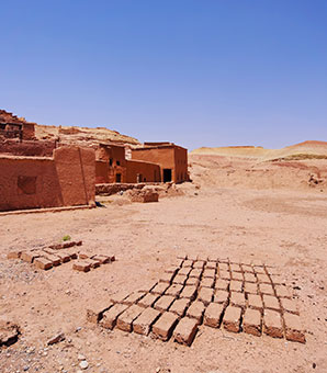 Adobe bricks, drying in the sun.